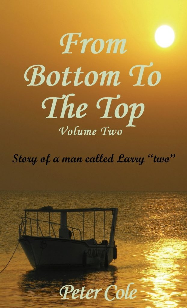 Book Cover: From the Bottom to the Top Volume Two